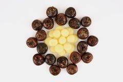 Chesnut de tierra, castañas de agua chinas: el natural de la fruta de Tailandia tiene propiedades medicinales Foto de archivo libre de regalías
