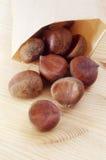 Chesnuts Photo libre de droits