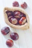 Chesnuts Stock Photography