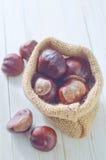 Chesnuts Images libres de droits