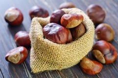 Chesnuts Стоковые Изображения RF