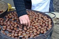 Chesnuts стоковые фотографии rf