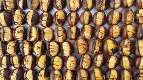 Chesnuts Fotografia de Stock Royalty Free