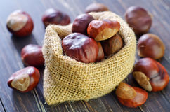Chesnuts Royalty Free Stock Images