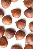 Chesnuts on white background Stock Images