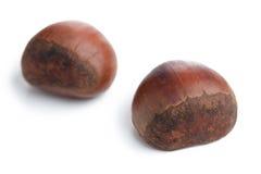 Chesnuts on white background Stock Photos
