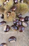 Chesnutson dulce fresco una tabla imágenes de archivo libres de regalías