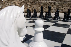Chess. White hourse on the chess board Stock Photography