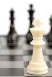 Chess. White and black chessmen on a chessboard Stock Photo