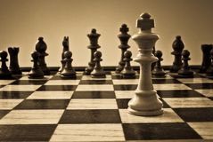 Chess royalty free stock image