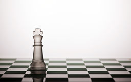 Chess. Pieces on a white background Royalty Free Stock Photos
