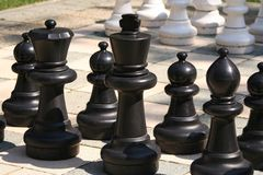 Chess. Pieces on the board Royalty Free Stock Images