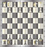Chess. Board with the order placed by men Royalty Free Stock Image