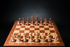 Chess. Pieces on wood board Stock Image