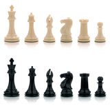 Chess. Black and white pieces from a game of chess Stock Images