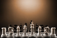 Chess. Black and white pieces from a game of chess Royalty Free Stock Images