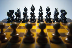 Chess. Board before the start of the game Royalty Free Stock Photo