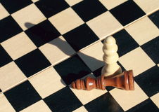 Chess. End of game chess with two kings - check mate Stock Photography