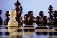 Chess. A game of chess comes to an end. The black king is checkmated, and white is victorious Stock Photography