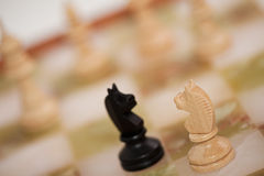 Chess. Two knights standing in front of each other Stock Image