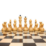 Chess. On a white background Royalty Free Stock Image