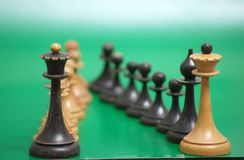 Chess. Order on green background royalty free stock photo