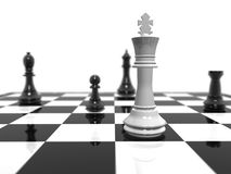 Chess. White king protected the black king Royalty Free Stock Images