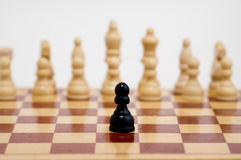 Chess. Close up of chess isolated on a white background Stock Photography