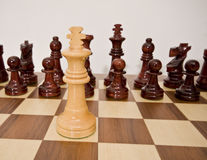 Chess. Pieces of chess placed on the board Stock Image
