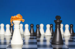 Chess as a policy 14 Royalty Free Stock Photos