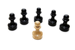 Chess battle. Isolated on a white background Royalty Free Stock Photos