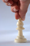 Chess bishop Royalty Free Stock Photos