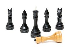 Chess Black defeated the bright king. Royalty Free Stock Photo