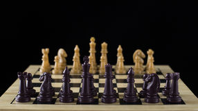 Chess On Black Stock Image
