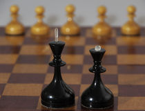 Chess black and white figures Stock Images