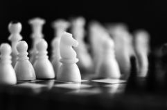 Chess in black and white royalty free stock photography