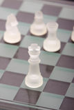 Chess board. A game of chess on checkerboard Stock Images