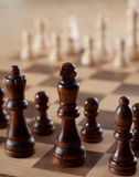 Chess on Board Royalty Free Stock Photo