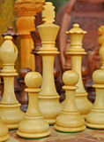 Chess board royalty free stock photos