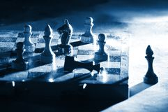 Chess on a board Stock Photos