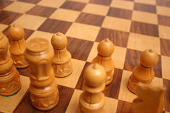 Chess Board And Figure Stock Images