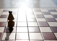 Chess board with bishop on light color background Stock Image