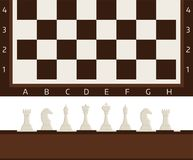 Chess board and chessmen vector strategy play leisure battle choice tournament tools. Chess board and chessmen vector leisure. Concept knight group white and Stock Photo