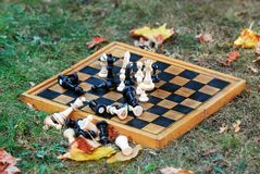 Chess board and figures on a autumn grass stock photos