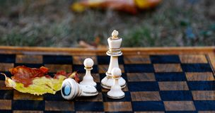 Chess board and figures on a autumn grass royalty free stock images