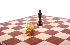 Chess board fragment isolated on white. Two kings figures on chess board fragment isolated on white Stock Photos