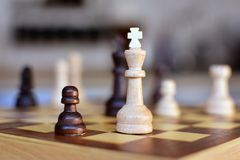 Chess board game with focus on white queen pieces on blurry background royalty free stock photos