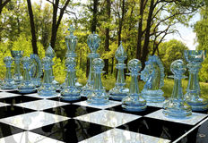 Chess board game in forest garden Stock Photography