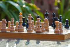 Chess board with greenry on the background. Chess board on the table in a green garden Royalty Free Stock Images
