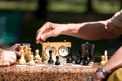 Chess board and hands Stock Image